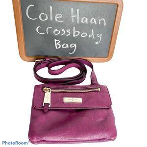 COLE HAAN Purple cross body bag